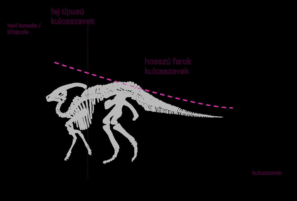long tail seo keresési görbéje behatárolt téma esetén. mint egy parasaurolophus